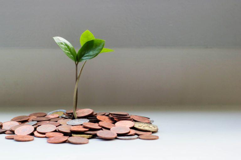 Finance Durable : Définition